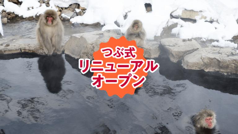 つぶ式リニューアル!!新しいテーマは「Snow Monkey」だ!