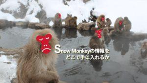 Snow Monkeyの情報をどこで手に入れるか